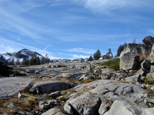 Today we hiked/ran from Squaw Valley to Donner Pass. Beautiful!